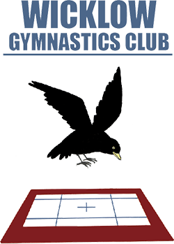 wicklow gymnastics club front